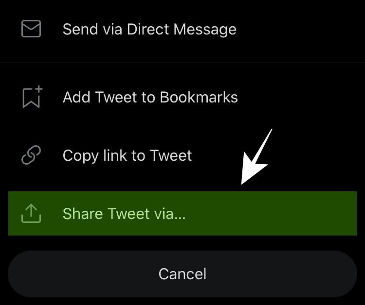 Select Share Tweet Via to Download Video Via Shortcut